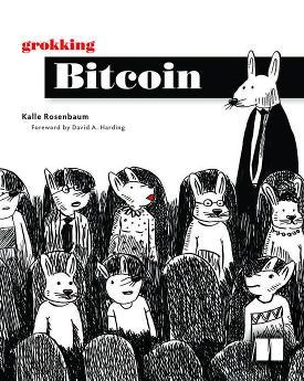 Grokking Bitcoin cover