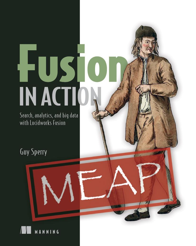 Fusion in Action MEAP V05 cover